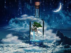 Wonderfull dream world