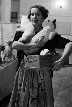 LIFE Goes to a Cat Show, 1952 |