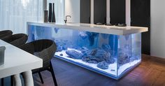 Robert Kolenik, a Dutch designer who focuses on high-end sustainable design, has created a stunning kitchen counter-top that has a beautiful large aquarium for a base. Though his designs are often high-end luxury fixtures, he nonetheless focuses on providing designs with low carbon footprints.