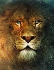 15 Best Lion Of Judah Images Lion Of Judah Tribe Of Judah Lion