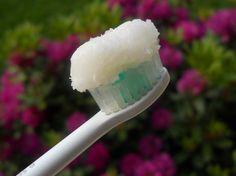 Saviez-vous que la noix de coco est une plante très puissante qui peut tuer les bactéries qui endommagent les dents? Des scientifiques irlandais ont testé des échantillons d'huile de coco sur la Streptococcus mutans. C'est une bactérie qui colle à nos dents et qui provoque l'érosion dentaire. L'huile de coco est devenue le meilleur allié …