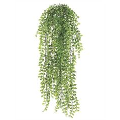 Fern hanging bush, 32'' Silk Plants, Fake Plants, Foliage Plants, Hanging Plants, Artificial Indoor Plants, Hanging Centerpiece, Tree Silhouette, Plant Design, Fake Flowers
