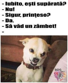 New memes en espanol frases chistes ideas Cool Memes, New Memes, Funny Spanish Memes, Spanish Humor, Spanish Grammar, Spanish Language, Spanish Quotes, Animal Jokes, Funny Animals