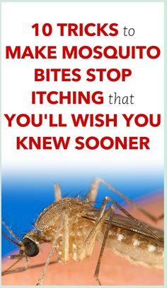 10 Tricks To Make Mosquito Bites Stop Itching That You�ll Wish You Knew Sooner Natural Health Remedies, Natural Cures, Natural Skin, Natural Healing, Stop Mosquito Bite Itch, Mosquito Bite Relief, Home Remedies For Mosquito, Health Planner, Fitness Planner