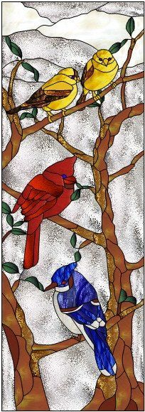 Finch Cardinal Blue Jay in a tree