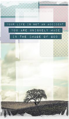 ...Made in the Image of God