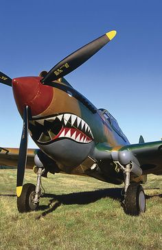 Curtiss P-40C Tomahawk : The Flying Heritage Collection