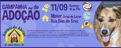 BONDE DA BARDOT: RJ: Abrigo João Rosa faz campanha de adoção de animais no Méier, neste domingo (11/09)