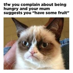 """""""Have some fruit"""" is possibly the worst answer to """"I'm hungry"""", Mum."""