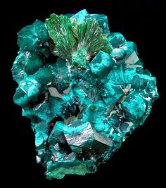 Dioptase crystals with Malachite sprays and Plancheite Tantara Mine, Democratic Republic of Congo Geology Wonders Minerals And Gemstones, Crystals Minerals, Rocks And Minerals, Stones And Crystals, Gem Stones, Crystal Magic, Beautiful Rocks, Mineral Stone, Rocks And Gems