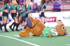 "Saskatchewan Roughriders ""Gainer The Gopher"" Go Rider, Saskatchewan Roughriders, Canadian Prairies, Saskatchewan Canada, Rough Riders, Le Far West, Green Colors, Pride, Football"