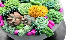 Buttercream Succulent Cake Decorating - CAKE STYLE