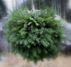 Suvikumpu: HAVUPALLO-OHJE Hobbies And Crafts, Diy And Crafts, Winter Christmas, Christmas Crafts, Outdoor Christmas Decorations, Holiday Decor, Terrace Garden, Holidays And Events, Natural Materials