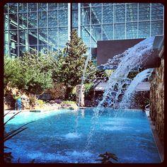 Summer Pool fun at the Gaylord Texan Resort Photo by bethanylarossa • Instagram