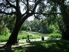 Gulbenkian garden, Lisbon