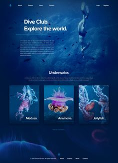 Underwater web ui hd Best Picture For Web Design learning For Your Taste You are looking for somethi Website Design Inspiration, Best Website Design, Website Design Layout, Web Layout, Layout Design, Blog Layout, Graphisches Design, Web Design Trends, Page Design