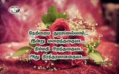 28 Best Lawrence Images Tamil Bible Bible Words Bible Quotes