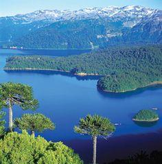CHILE  Parque Nacional Conguillio.