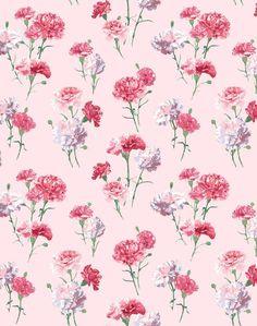 Pink floral wall paper pink floral wallpaper pink flower hd wallpaper for phone Wallpaper Paste, Wallpaper Panels, Pink Wallpaper, Flower Wallpaper, Wallpaper Roll, Cool Wallpaper, Iphone Wallpaper, Vintage Roses, Vintage Green