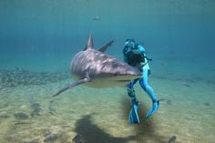Most Exciting Scuba Diving Spots