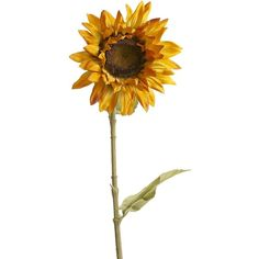Pier One Faux Sunflower Stem - Yellow (20.160 IDR) ❤ liked on Polyvore featuring home, home decor, floral decor, flowers, plants, fillers, backgrounds, extras, pier 1 imports and fake flower bouquet