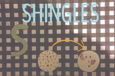 CLUE: An example of a disease/disorder studied by epidemiologists. Epidemiologists study and tract diseases, and they can do this for people with SHINGLES. If there were to be an outbreak of shingles for some reason, then they could track it down to when they got it and how severe it might be.