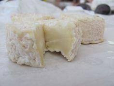 Rigotte de Condrieu French Cheese // region : Rhones Alpes (Lyon) // milk : goat // (queso frances, fromage aop)