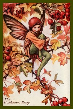 The Hawthorn Fairy by Cicely Mary Barker from the 1920s. Quilt Block of vintage fairy image printed on cotton. Ready to sew. Single 4x6 block $4.95. Set of 4 blocks with pattern $17.95.