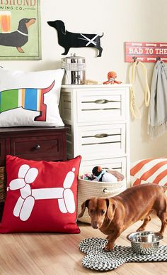 My dog Max would love this a dachshund corner <3 (that even looks like Max)