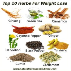 Top 10 Herbs For Weightloss |Natural Cures Not Medicine