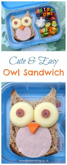 Easy owl sandwich and cute bento lunch idea from Eats Amazing UK - kids will love this fun lunchbox surprise