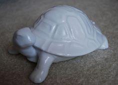 Cutie pie turtle