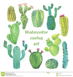 Watercolor Cactus Set - Download From Over 61 Million High Quality Stock Photos, Images, Vectors. Sign up for FREE today. Image: 55602381
