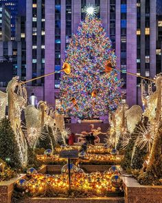 christmas tree photography Its lit! The Rockefeller Center Christmas tree in all her glory ( New York Christmas Tree, Christmas Travel, Magical Christmas, Christmas Mood, Xmas Tree, White Christmas, Christmas Lights, New York Weihnachten, Diy Weihnachten
