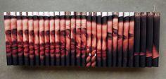 Lucas Simões Fotografias costuradas em madeira e tecido 21 x 85 cm 2010