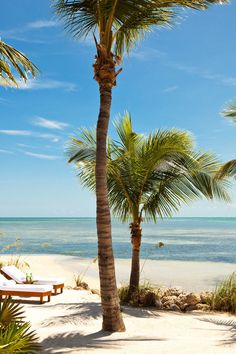 The 10 Best Beach Resorts in Florida - When it comes to warm-weather getaways, sometimes, only a beach will do. And what better place to find one than Florida, whose 1,350-mile coastline includes more than 800 miles of sand. From the Gulf to the Keys, the 10 best beach resorts in Florida have it all: award-winning spas, top-notch seafood, and yes, dazzling ocean views. It's time to check in.