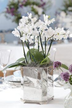 mesa posta para batizado Flower Centerpieces, Pretty Flowers, Orchids, Glass Vase, Succulents, Floral Design, Bouquet, Tropical, Wedding
