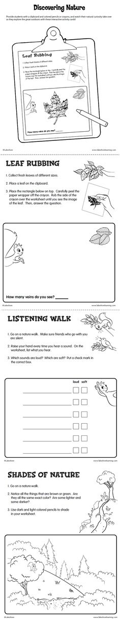Discovering Nature Activity Cards Printable from Lakeshore Learning