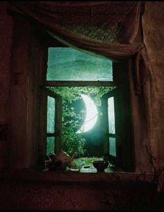 A Hobbit home. :)