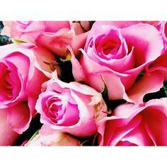© Avril Louise #flowers #fleurs #roses