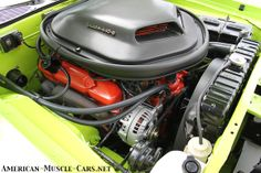 1971 Plymouth Cuda. Part of American-Muscle-Cars.net, the online index organized by Make, Model & Year w/Eye-Popping Pictures, History & Specs.