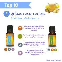 Image result for doterra top 10 esenciales de salud