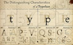 The Characteristics of a Typeface on flickr - I like how it is designed to teach