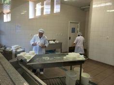 Produção de queijo na Casa da Ínsua