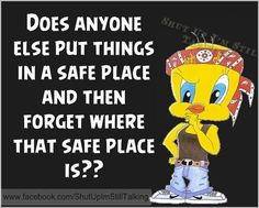 Cartoon Birds, Funny Birds, Motivational Picture Quotes, Inspirational Quotes, Tweety Bird Quotes, Good Afternoon Quotes, Snoopy Quotes, Lisa, Cartoon Jokes