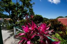 Garden view rooms at Juliana's Hotel