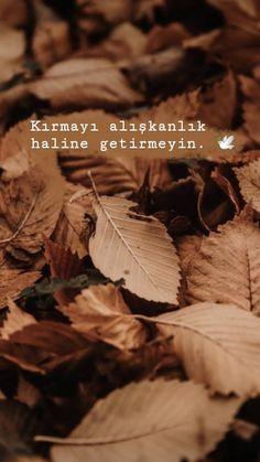 Ve getirip yanınızdakileri siz fark etmeden kaybetmeyin. Beautiful Mind Quotes, Beautiful Words, Deep Words, True Words, Islamic Quotes, Arabic Quotes, Photos Tumblr, Girly Pictures, Meaningful Words