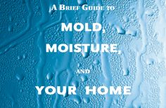 This Guide provides information and guidance for homeowners and renters on how to clean up residential mold problems and how to prevent mold growth.