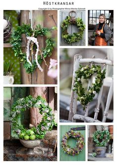 New category: chair wreaths. Memory: I have my grandmother's 110 year old wooden kitchen table and chairs I foolishly refinished 30 years ago. But I could paint it again and distress the paint. Autumn Wreaths, Holiday Wreaths, Autumn Inspiration, Christmas Inspiration, Greenery Wreath, Floral Wreath, Deco Floral, Diy Wreath, Wreath Ideas