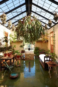 In the limonaia, or citrus conservatory, off the kitchen, a large stag…